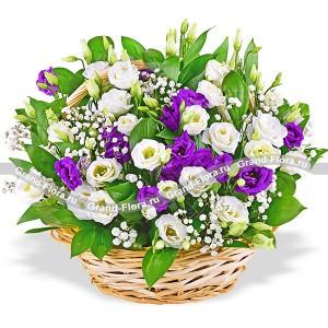 Цветов краснодарский доставка цветов new york доставка цветов сочи